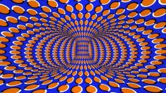 Illusions and the Mind's Reality