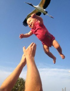 20 Incredible Photos That Were Taken at the Perfect Moment