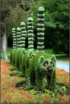Top 20 Sculptural Topiaries